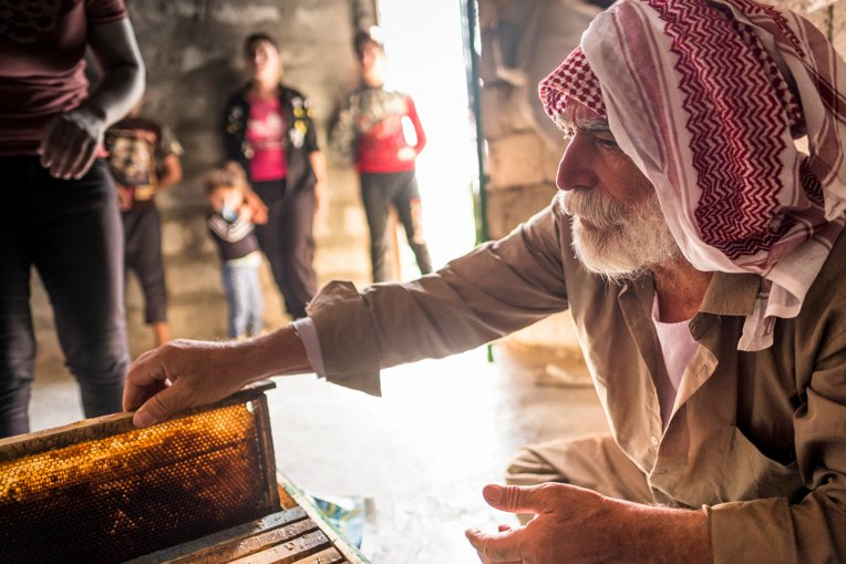 azidi families are learning the practice of beekeeping from Samaritan's Purse staff.